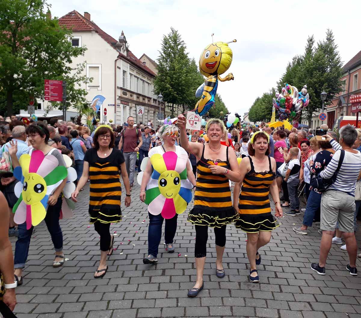 Bienen und Blüten 20180603